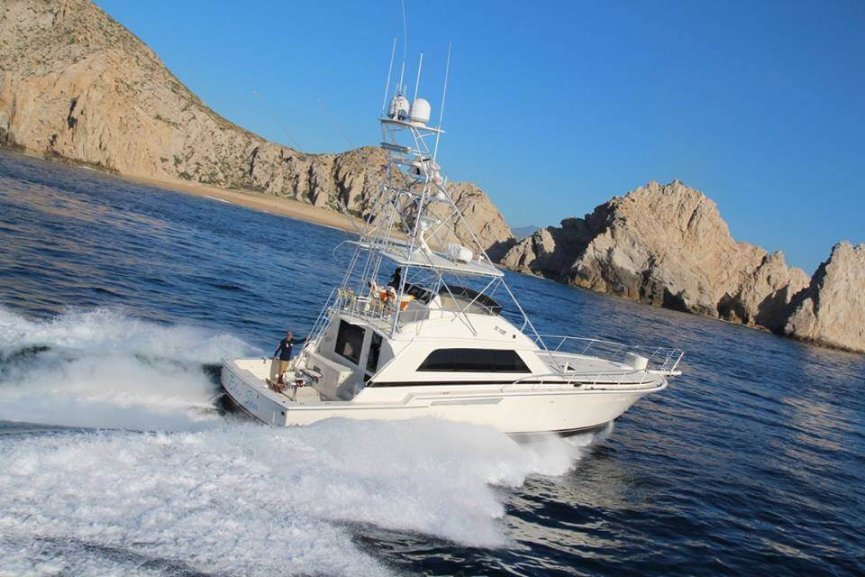yacht charters cabo san lucas, cabo san lucas charter boats, luxury yacht charter cabo san lucas, cabo yacht rentals, cabo sportfishing, luxury charter yacht cabo san lucas, yacht charters cabo san lucas boat charters, boat charters cabo san lucas, yacht rentals cabo, yacht in cabo san lucas, yachts cabo san lucas, los cabos yacht charter, san jose del cabo yacht charters, cabo charter yacht, cabo san lucas yacht charter, yacht charters cabo cabo, yacht charters, yachts in cabo san lucas, charter boats in cabo san lucas, cabo yacht charter, boat charter cabo san lucas, yacht charters in cabo, yachts in cabo cabo san lucas yachts, luxury yacht rental in cabo san lucas, private yacht rental cabo san lucas, los cabos yacht, cabo san lucas yacht rentals, yacht rentals cabo san lucas, cabo san lucas yacht, private yacht charter cabo san lucas, private yacht charters to cabo, day yacht charters cabo san lucas, luxury yachts cabo yacht cabo san lucas, cabo yachts for charter, yacht in cabo yacht cabo, private yacht cabo san lucas, yacht los cabos, boat charter cabo san lucas mexico, yacht charter los cabos, yachts cabo cabo, charter boats cabo boat charters, day yacht charters cabo, cabo luxury yacht charter, cabo yacht, cabo private yacht charter, yacht charter cabo